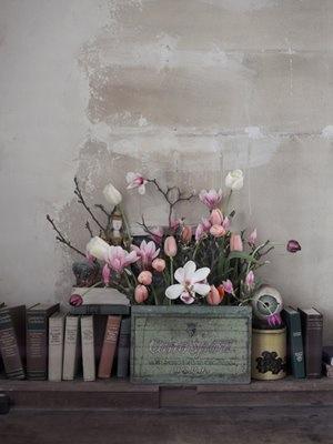 http--2.bp.blogspot.com-_WNTglWzi2I8-Sf4aavpLrOI-AAAAAAAAB7M-21R8wUDoG8A-s1600-h-JP-magnolia1.jpg.tiff