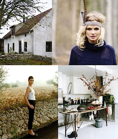 fall inspiration board leaves autumn .jpg