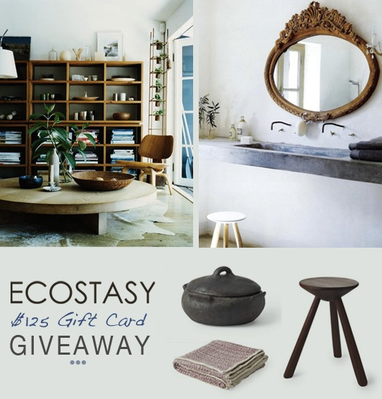 Ecostasy-eco-green-home-design-giveaway-