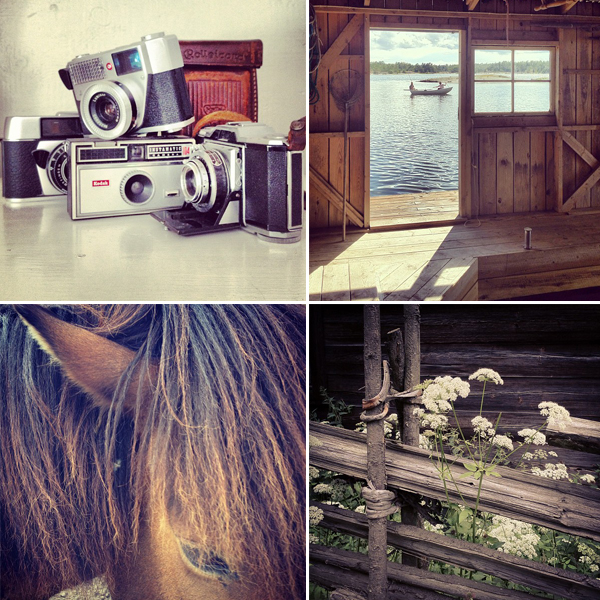 Instagram-asa-liffner-city-sage