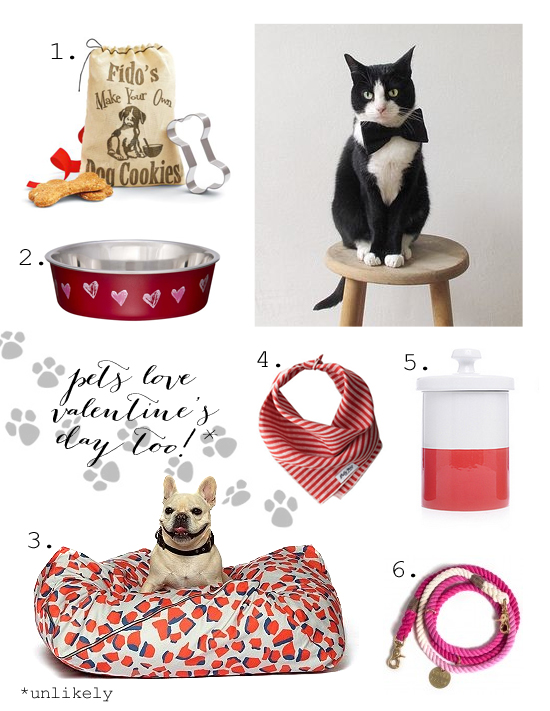 Valentine's day pet finds
