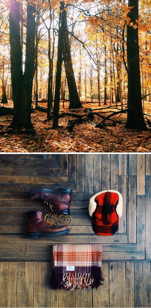 Fall adventures