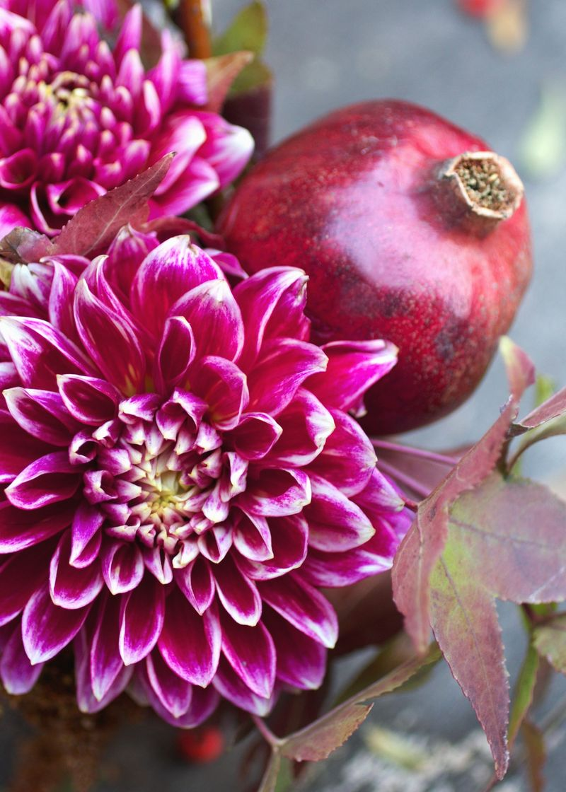 Dahlia + pomegranate fall florals