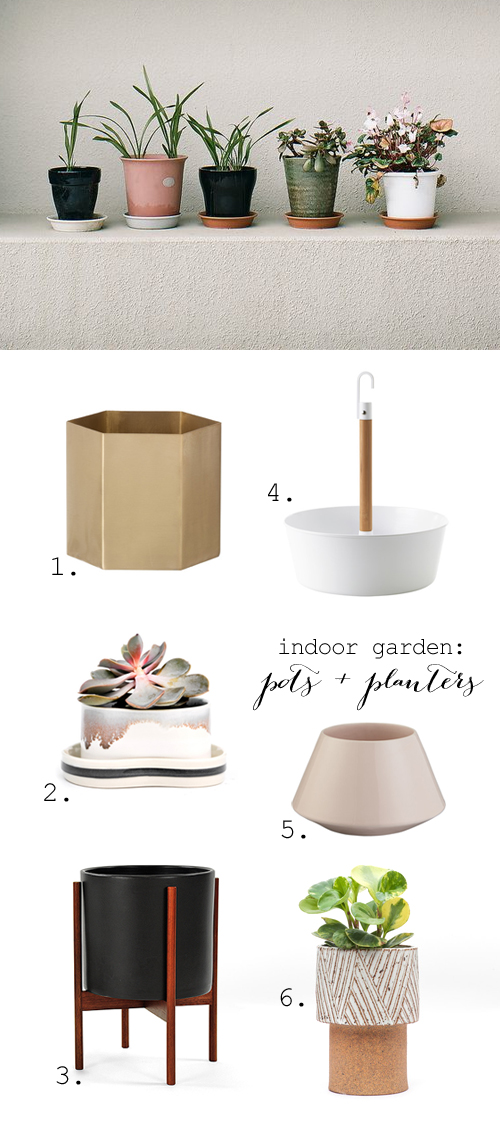 Stylish houseplant pots