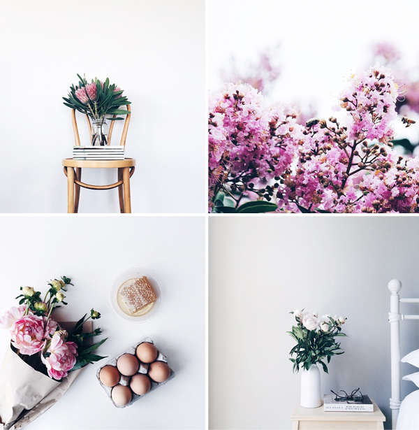 Instagram flowers