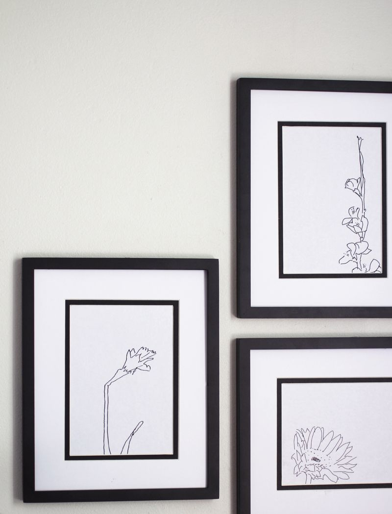 Flower line drawings